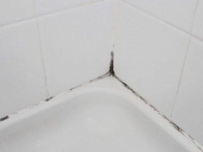 Проблема появления плесени в ванной