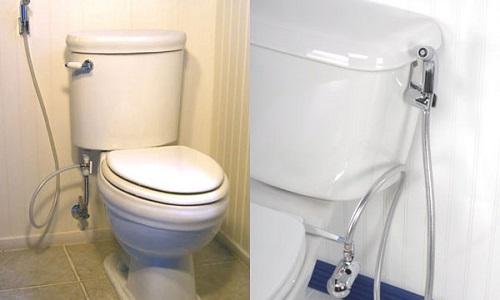 Рисунок 1. Гигиенический душ для унитаза